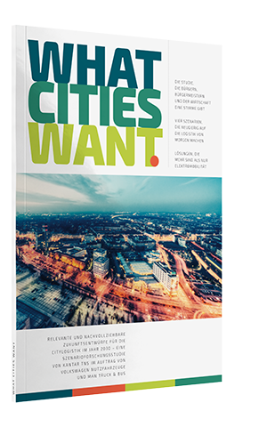 What Cities Want E-Book